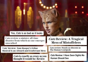 cats-reviews-1576777051